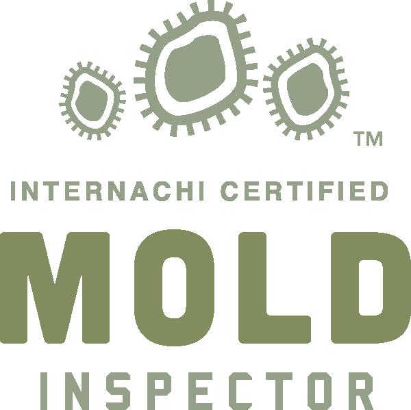 Mold Inspection Billings, Mt