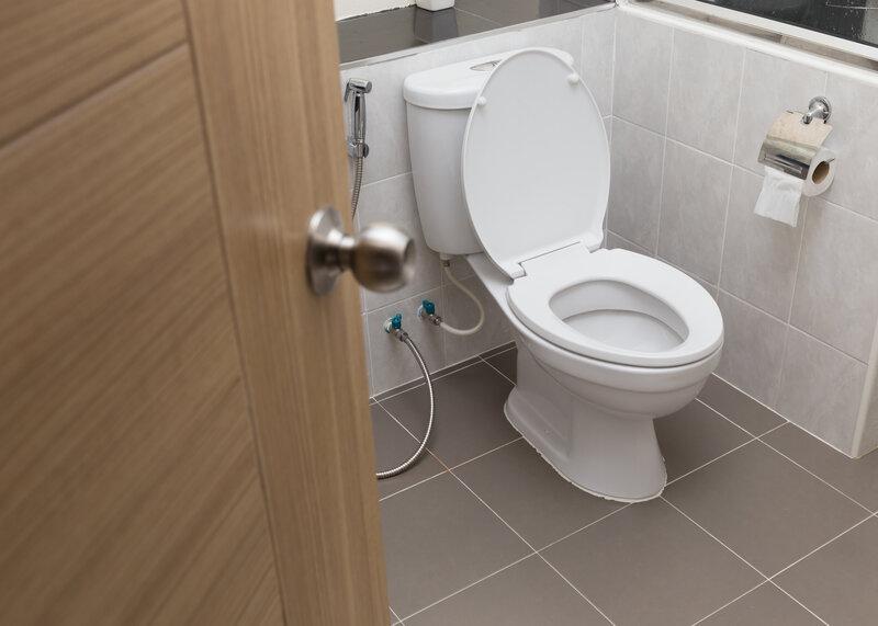 Toilet Inspection Billings
